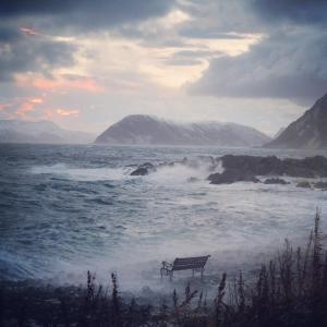 Benken og havet